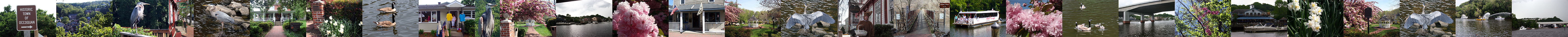 Spring 2016 in Historic Occoquan